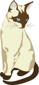 Siamese Cat svg #5, Download drawings