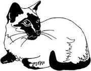 Siamese Cat svg #6, Download drawings