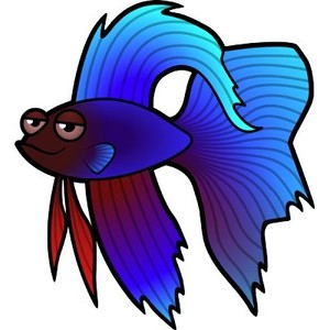 Siamese Fighting Fish clipart #11, Download drawings