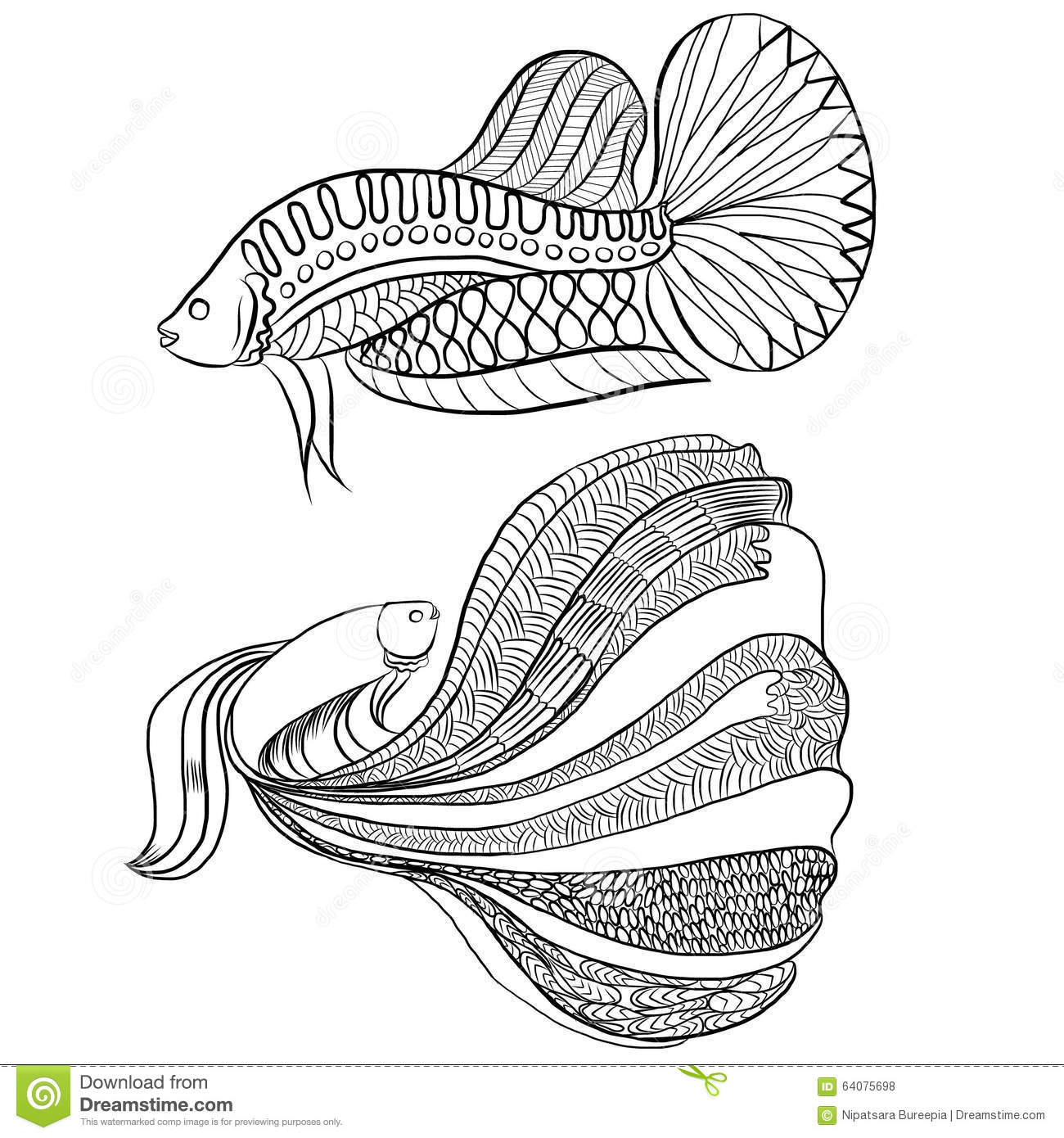 Siamese Fighting Fish clipart #18, Download drawings