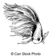 Siamese Fighting Fish clipart #7, Download drawings