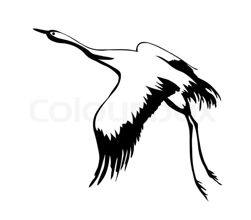 Siberian Crane clipart #17, Download drawings