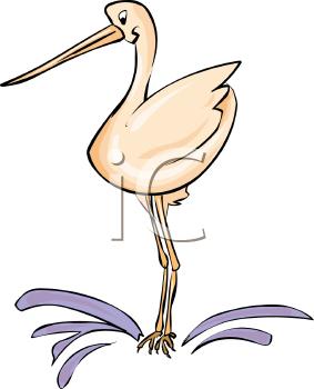 Siberian Crane clipart #7, Download drawings