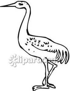 Siberian Crane clipart #11, Download drawings