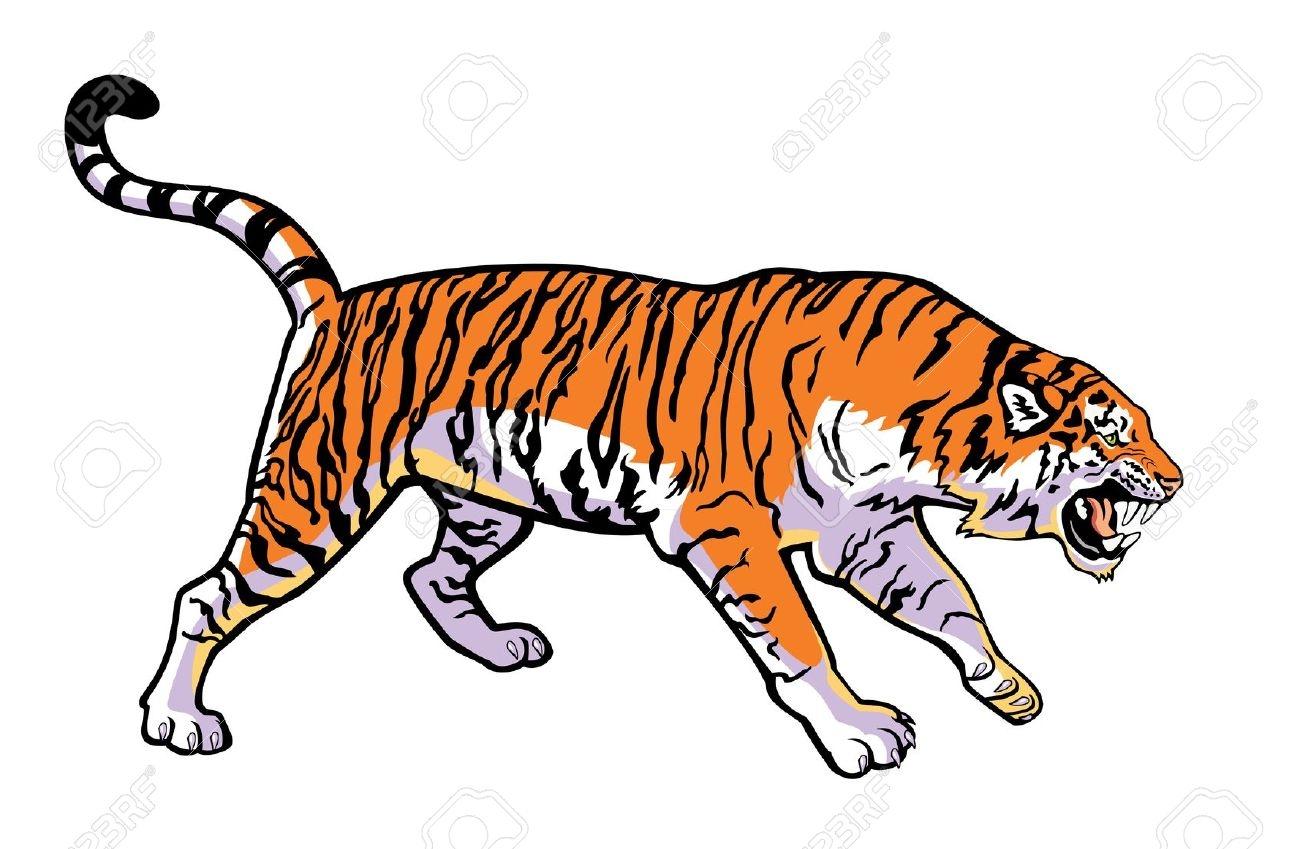 Siberian Tiger clipart #1, Download drawings