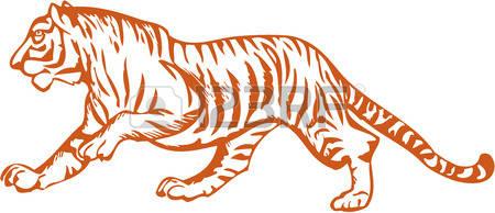 Siberian Tiger clipart #5, Download drawings