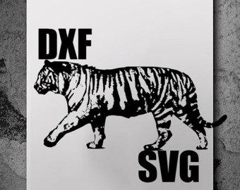 Siberian Tiger svg #2, Download drawings