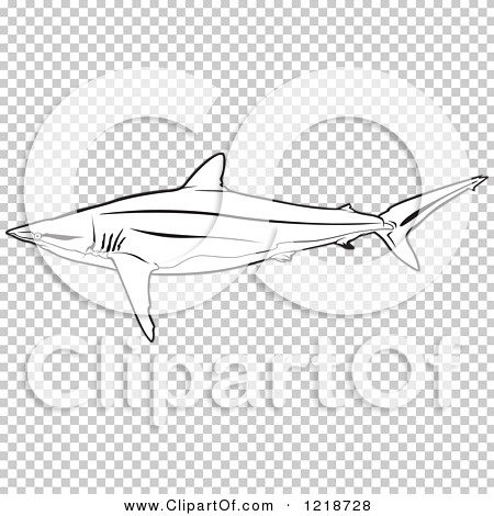 Silky Shark clipart #16, Download drawings
