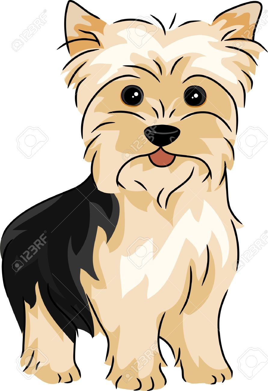 Silky Terrier clipart #20, Download drawings