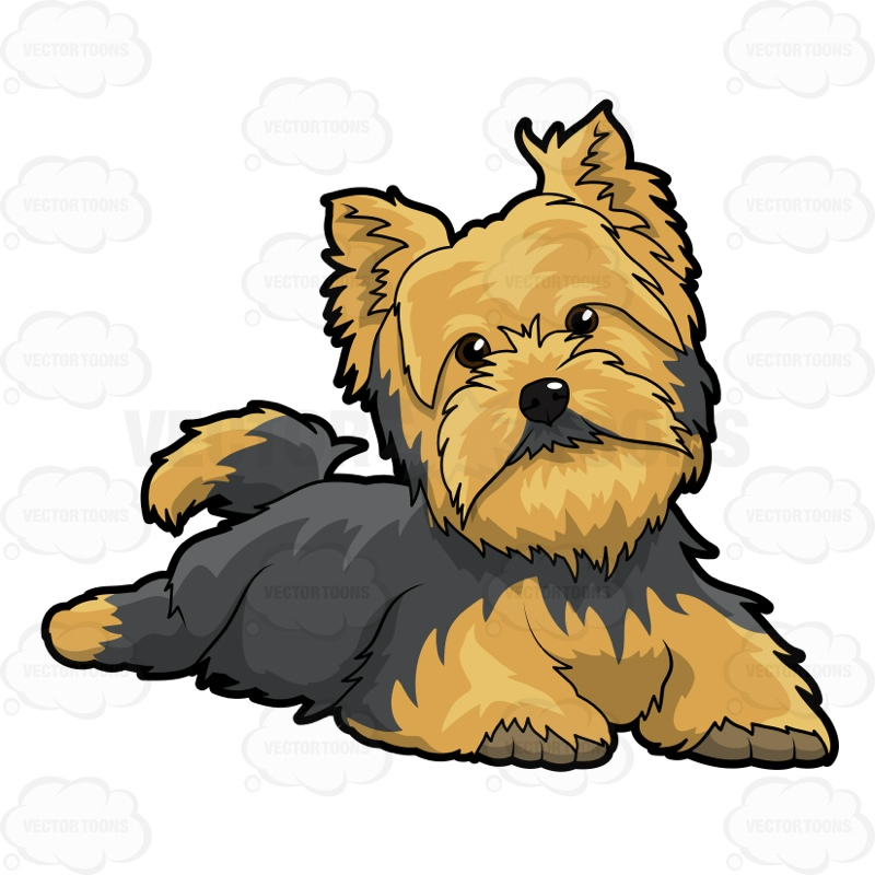Silky Terrier clipart #2, Download drawings