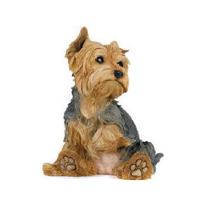 Silky Terrier clipart #15, Download drawings
