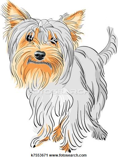 Silky Terrier clipart #16, Download drawings