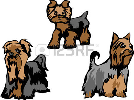 Silky Terrier clipart #4, Download drawings
