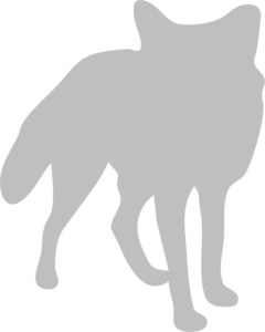 Silver Fox clipart #2, Download drawings