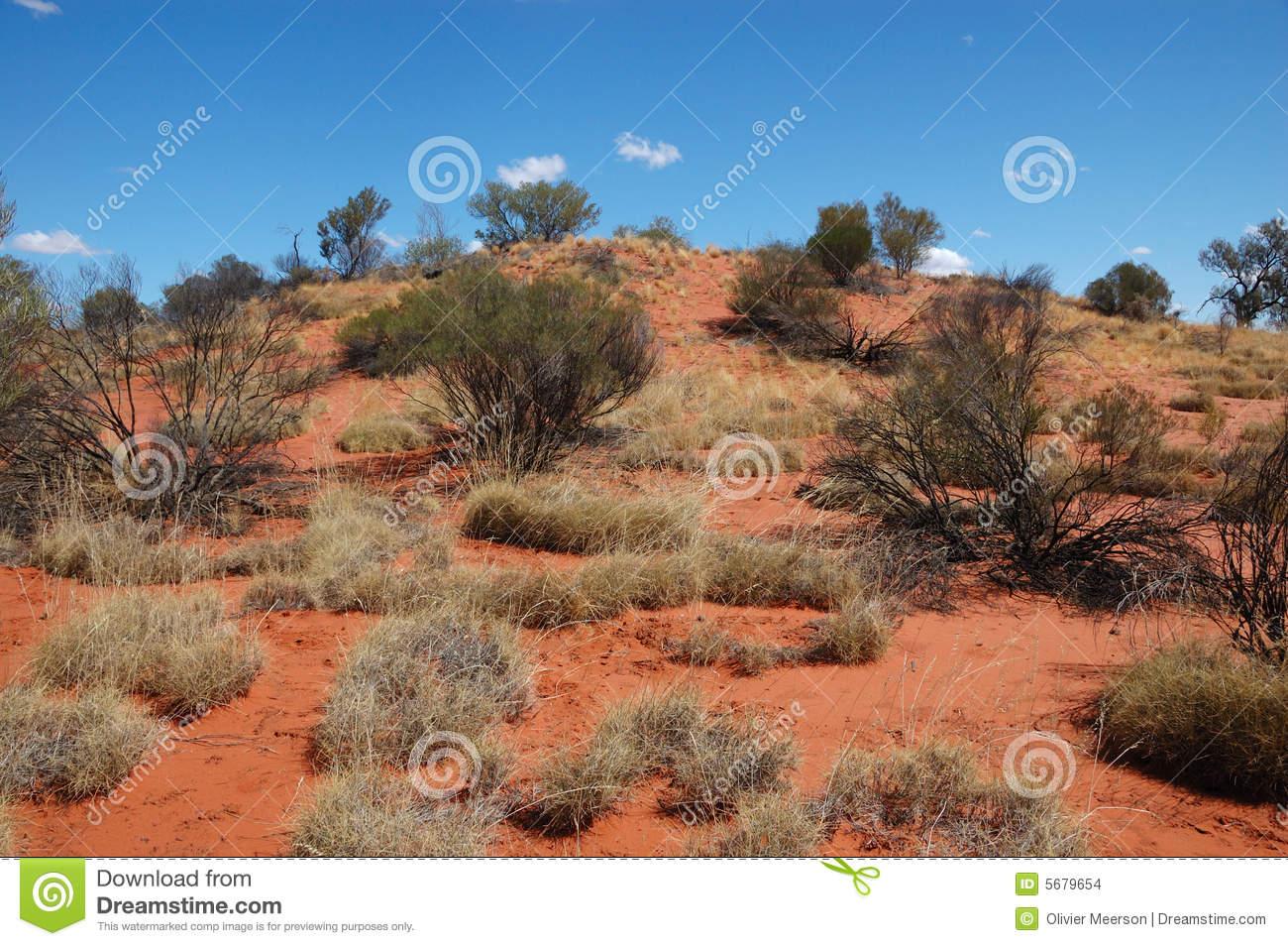 Simpson Desert clipart #13, Download drawings