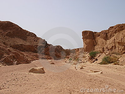 Sinai Peninsula clipart #9, Download drawings