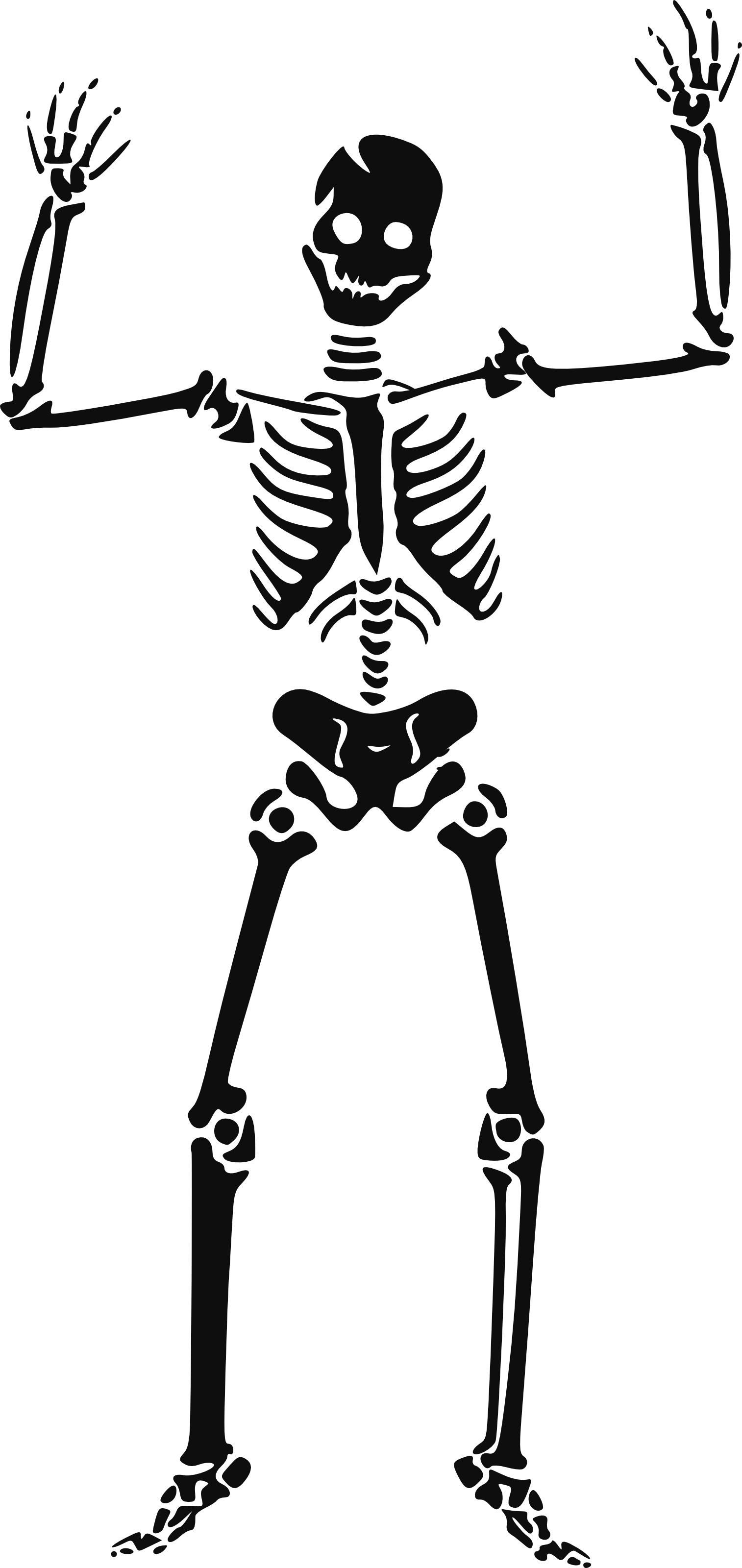 Skeleton clipart #11, Download drawings