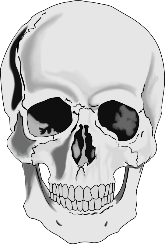 Skull clipart #2, Download drawings