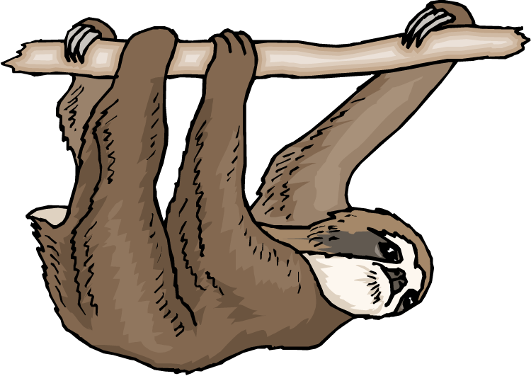 Sloth clipart #7, Download drawings