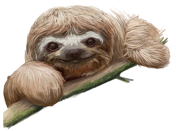 Sloth clipart #2, Download drawings