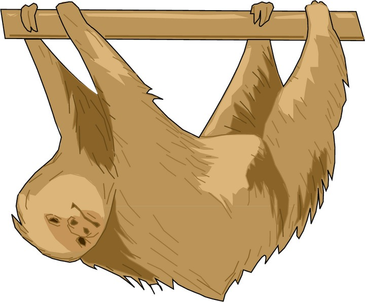 Sloth clipart #3, Download drawings