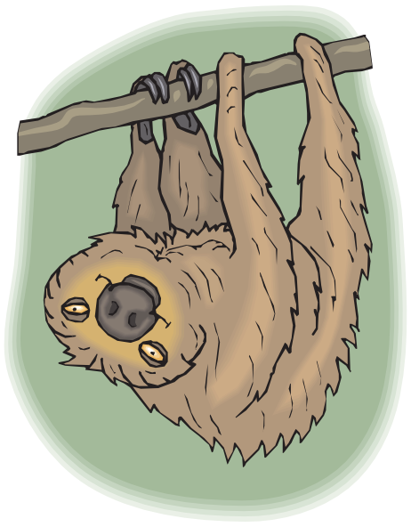Sloth clipart #10, Download drawings