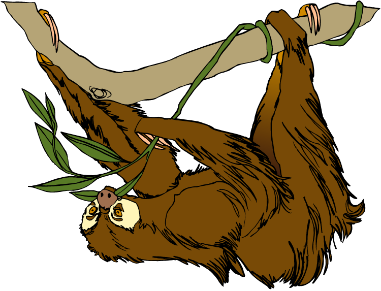 Sloth clipart #4, Download drawings