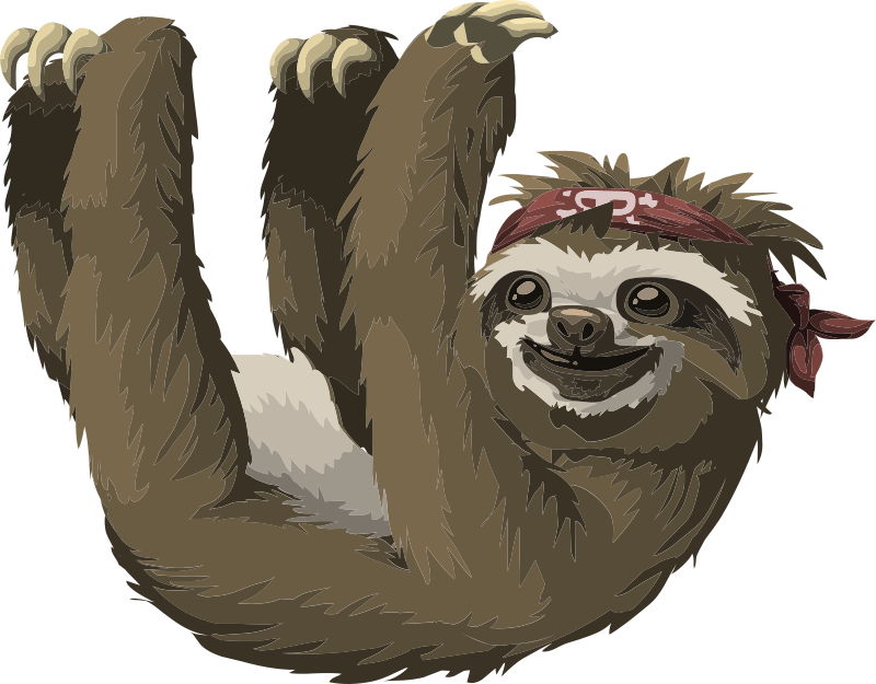 Three Toed Sloth svg #11, Download drawings