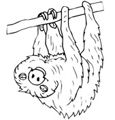 Sloth coloring #14, Download drawings