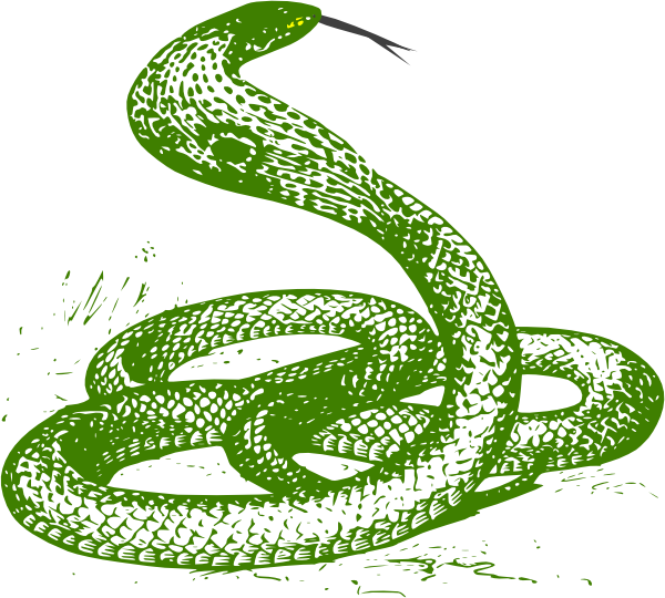 Smooth Green Snake clipart #3, Download drawings