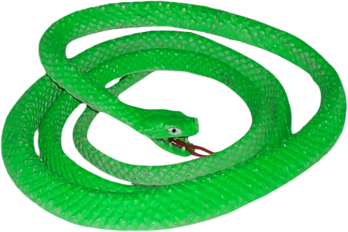 Smooth Green Snake clipart #2, Download drawings