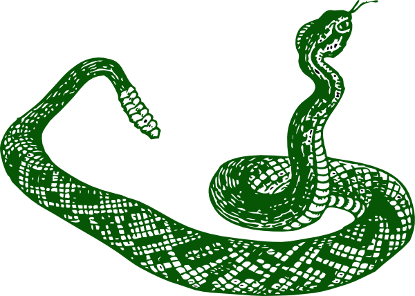 Smooth Green Snake clipart #5, Download drawings