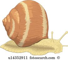 Snail clipart #10, Download drawings