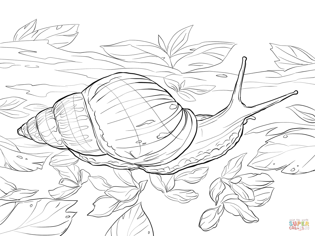Snail coloring #7, Download drawings