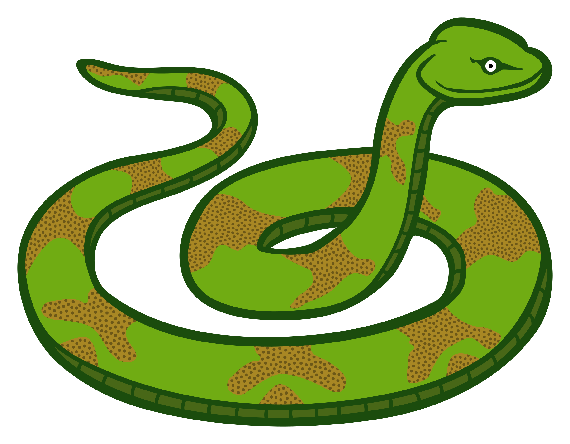 Smooth Green Snake clipart #11, Download drawings