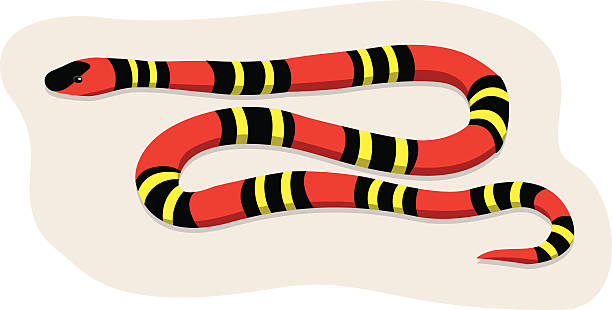 Snake River clipart #13, Download drawings
