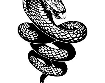 Tiger Snake svg #5, Download drawings