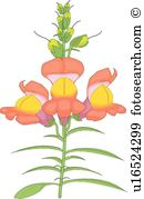 Snapdragon clipart #15, Download drawings