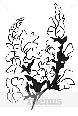 Snapdragon clipart #6, Download drawings
