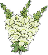 Snapdragons clipart #17, Download drawings
