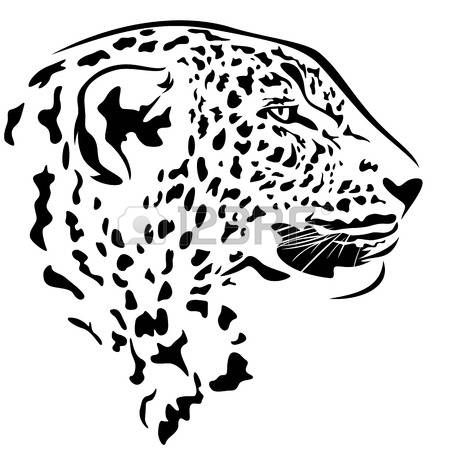 Snow Leopard clipart #9, Download drawings