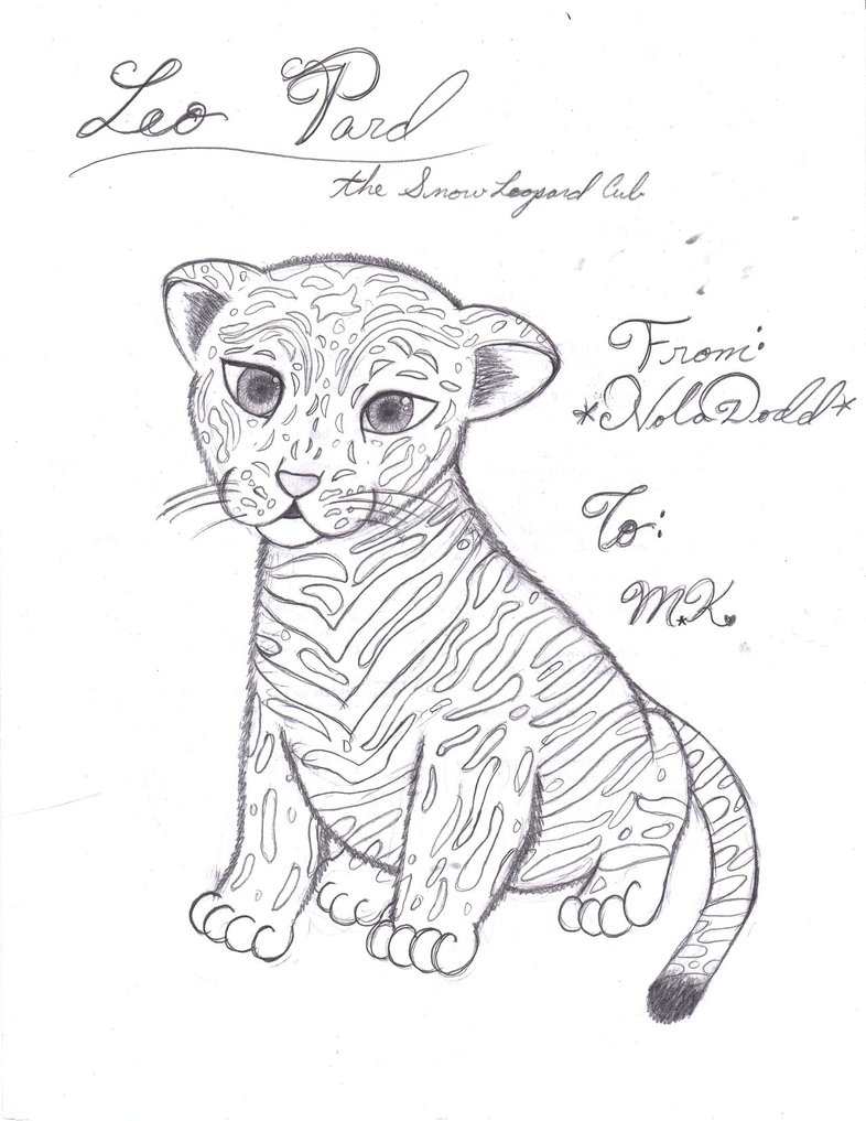 Snow Leopard coloring, Download Snow Leopard coloring for ...