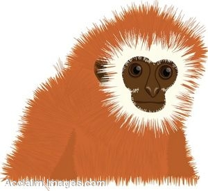 Snow Monkey clipart #15, Download drawings