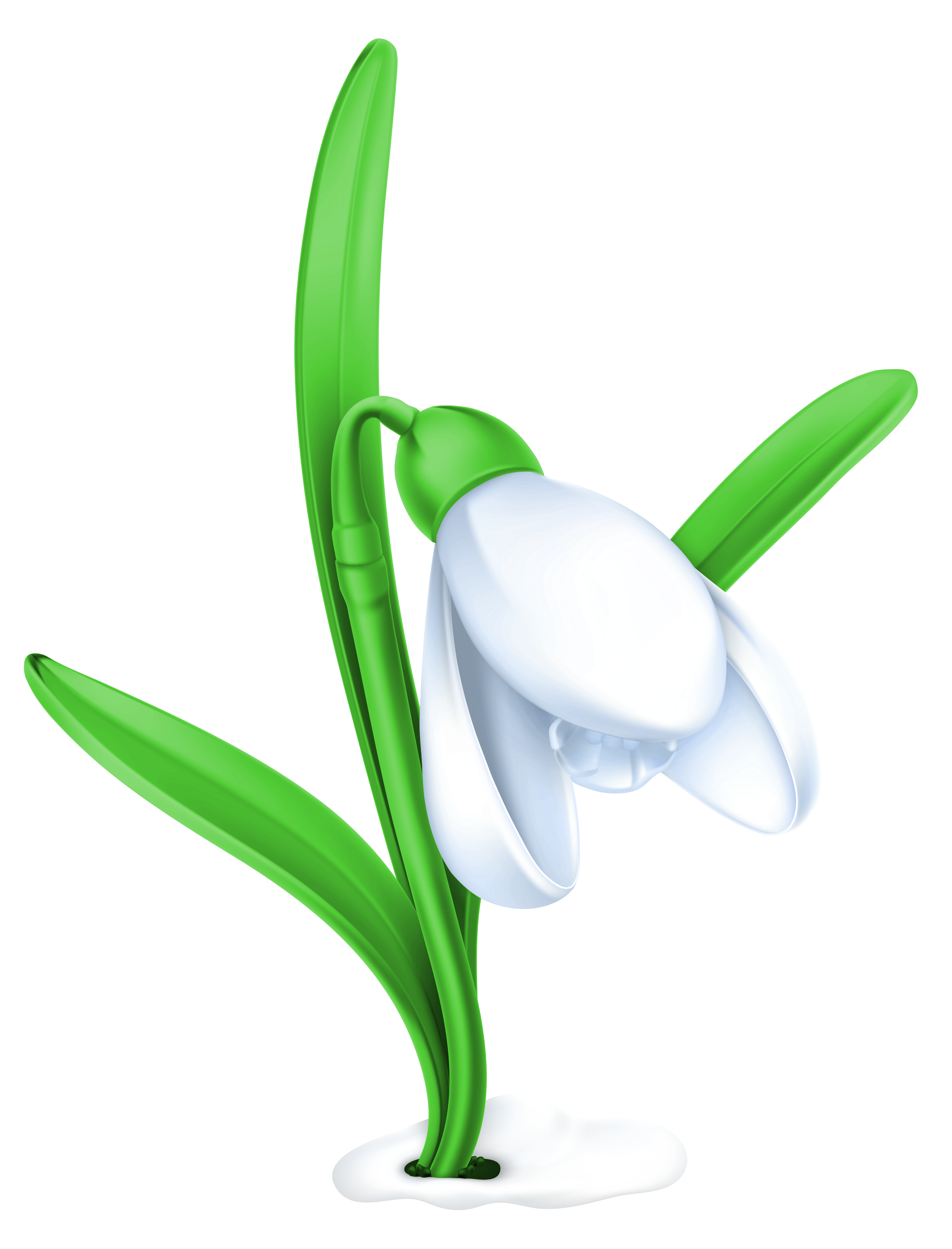 Snowdrop clipart #5, Download drawings