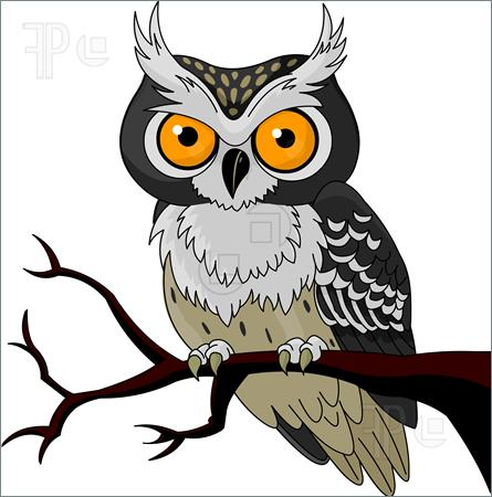 Snowy Owl clipart #14, Download drawings