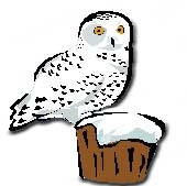 Snowy Owl clipart #19, Download drawings