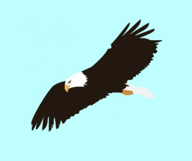 Soaring clipart #19, Download drawings