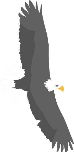 Soaring svg #7, Download drawings