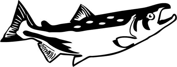 Sockeye Salmon clipart #10, Download drawings