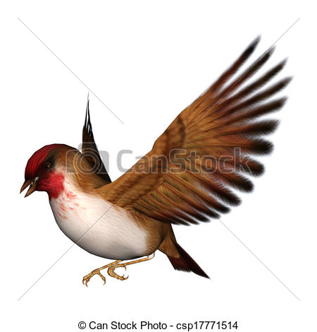 Songbird clipart #2, Download drawings
